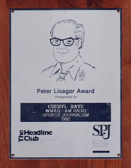 <h4>PETER LISAGOR AWARD</h4>
